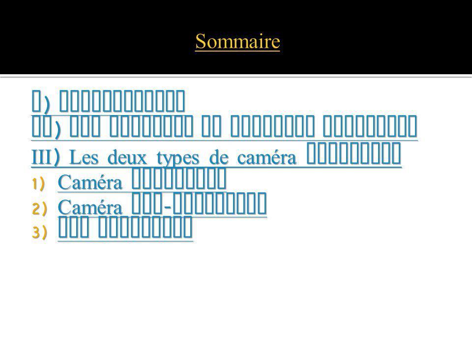 Sommaire I) Introduction. II) Les Domaines de Imagerie thermique. III) Les deux types de caméra thermique.
