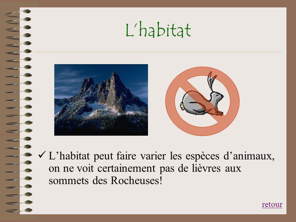 L'habitat L'habitat peut faire varier les espèces d'animaux, on ne voit certainement pas de lièvres aux sommets des Rocheuses!