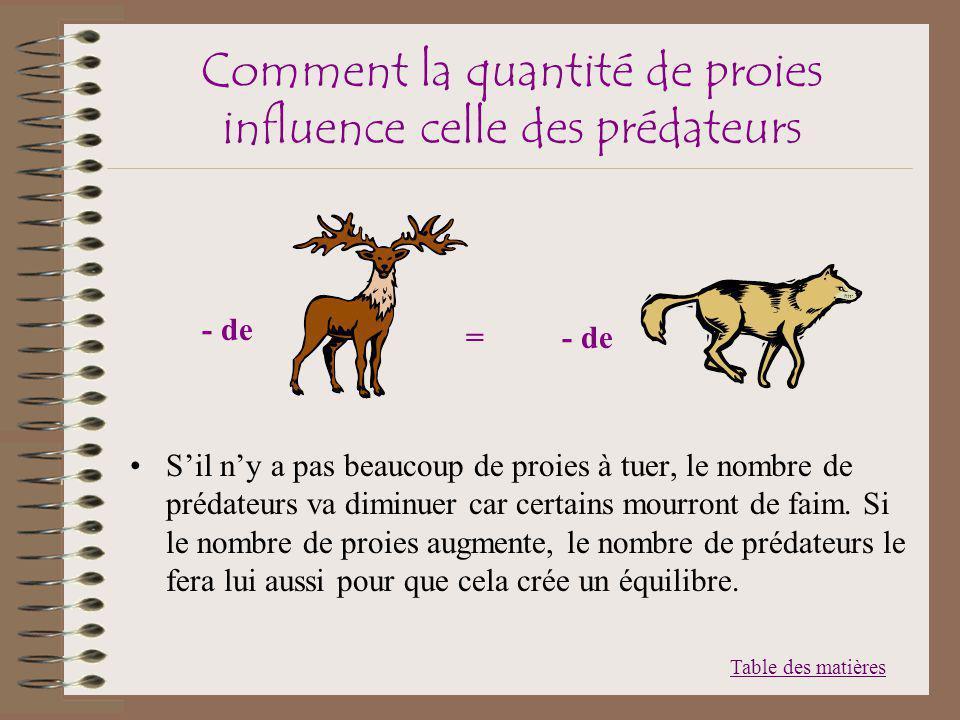 Comment la quantité de proies influence celle des prédateurs