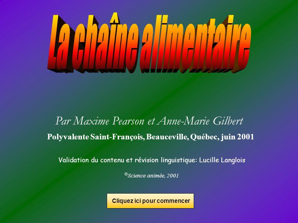 Polyvalente Saint-François, Beauceville, Québec, juin 2001