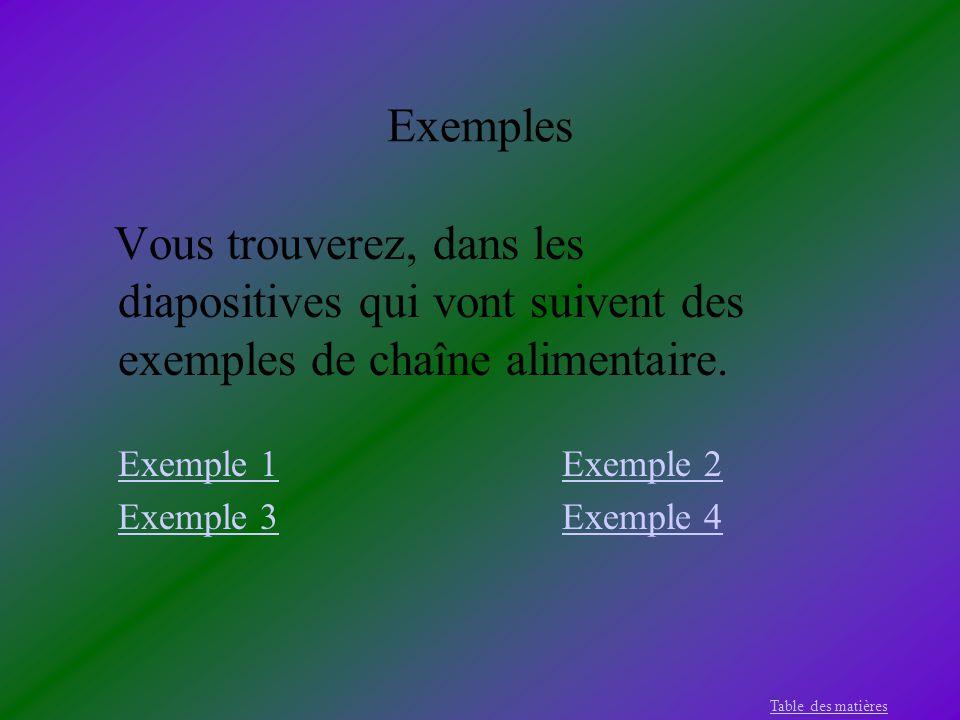 Exemples Exemple 1 Exemple 2 Exemple 3 Exemple 4