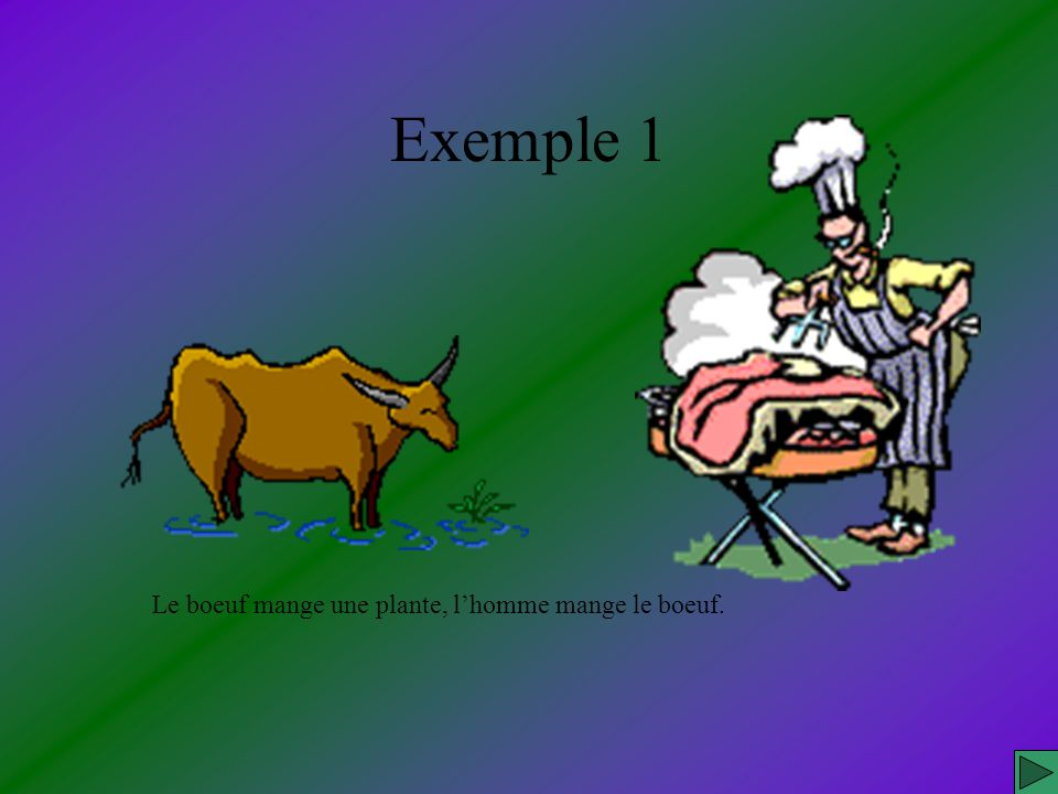 Exemple 1 Le boeuf mange une plante, l'homme mange le boeuf.