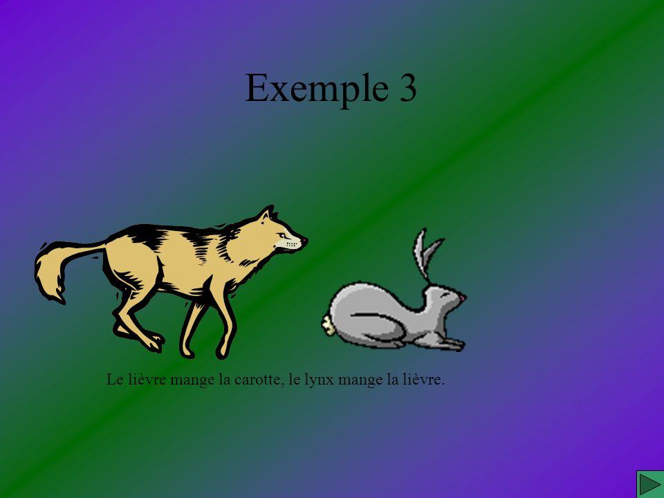 Exemple 3 Le lièvre mange la carotte, le lynx mange la lièvre.