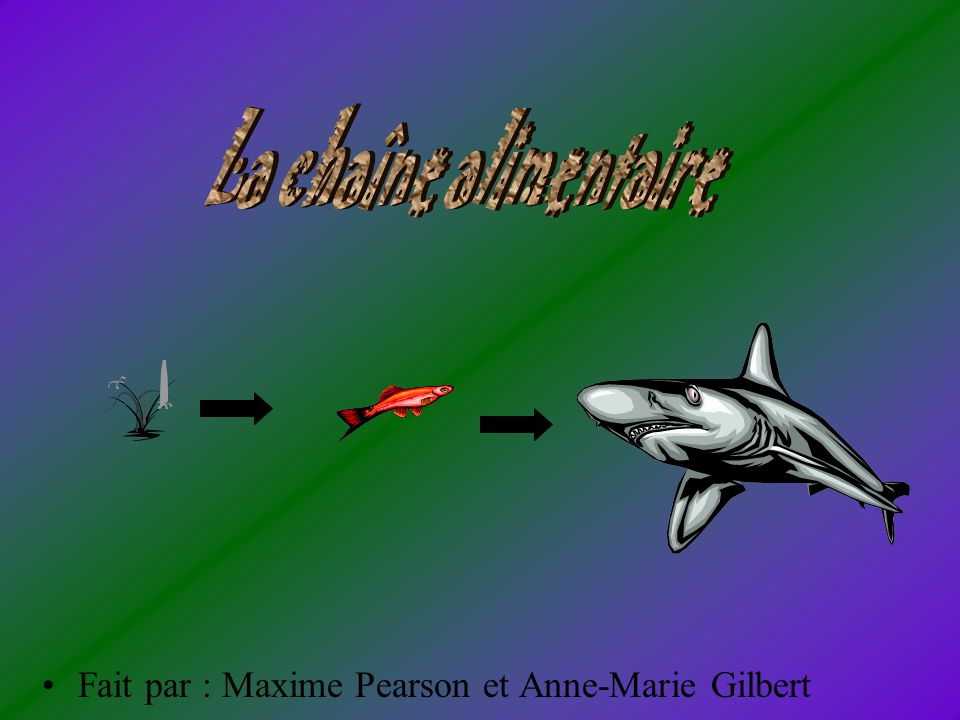 La chaîne alimentaire Fait par : Maxime Pearson et Anne-Marie Gilbert