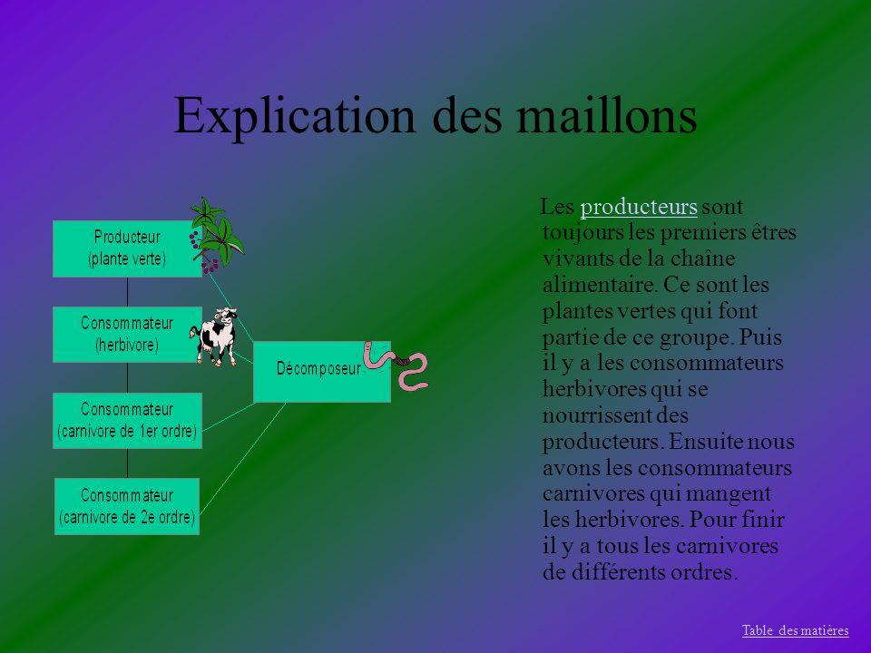 Explication des maillons