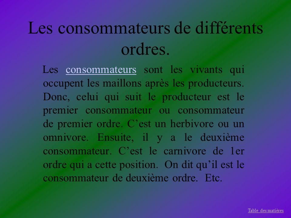 Les consommateurs de différents ordres.