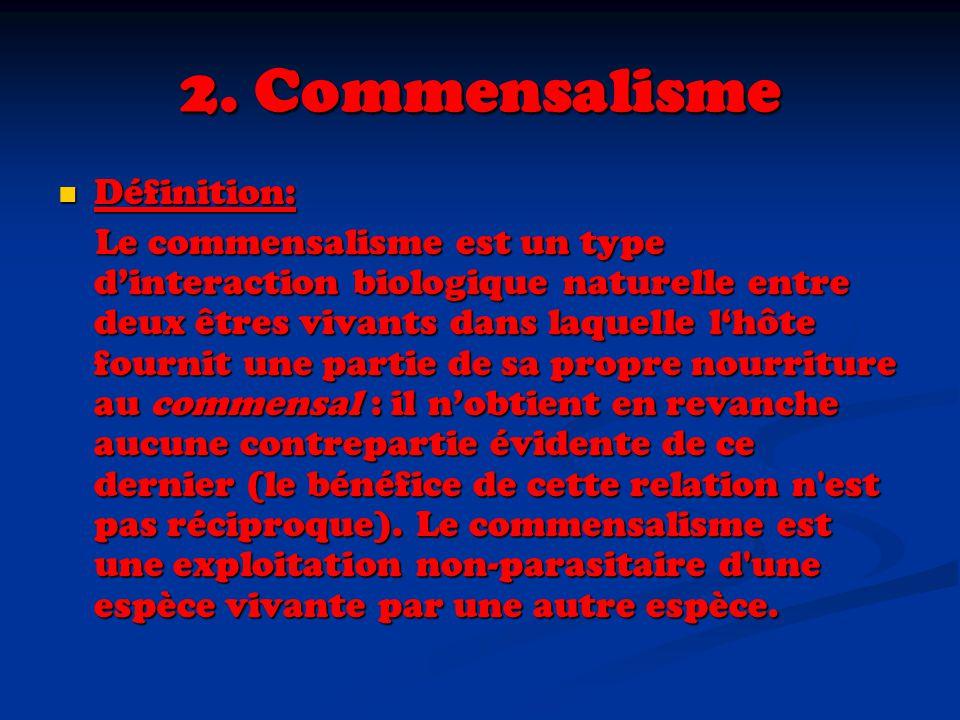 2. Commensalisme Définition: