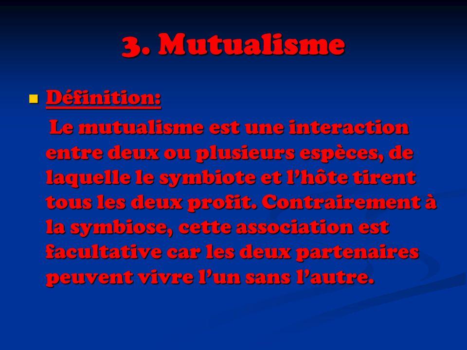 3. Mutualisme Définition: