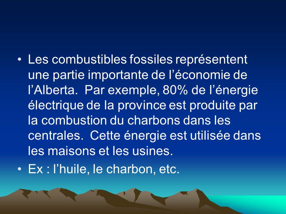 Les combustibles fossiles représentent une partie importante de l'économie de l'Alberta. Par exemple, 80% de l'énergie électrique de la province est produite par la combustion du charbons dans les centrales. Cette énergie est utilisée dans les maisons et les usines.