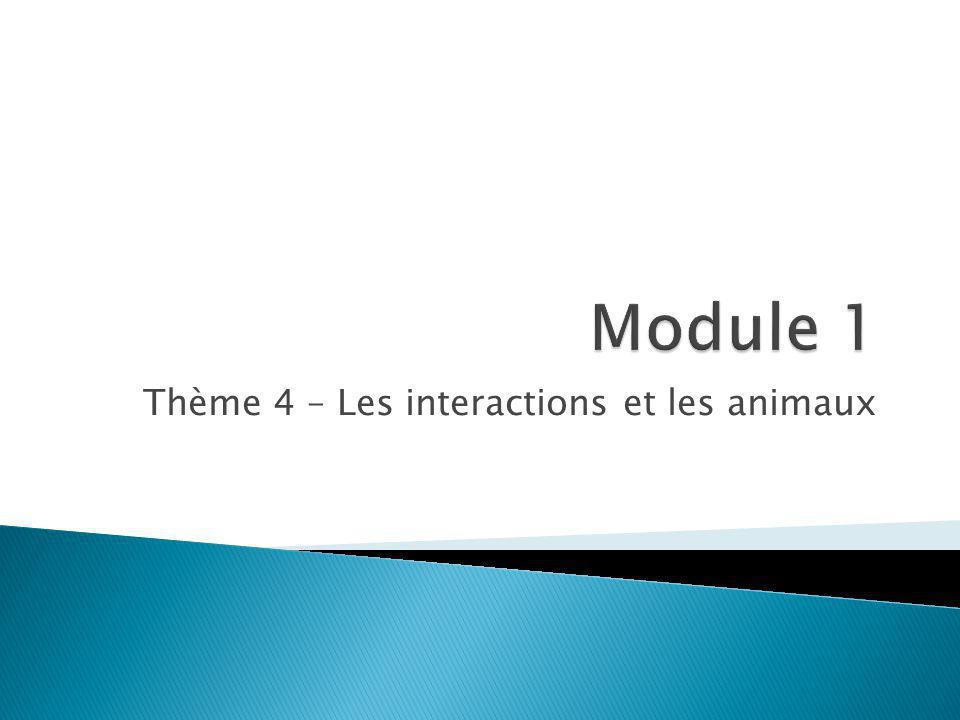 Thème 4 – Les interactions et les animaux