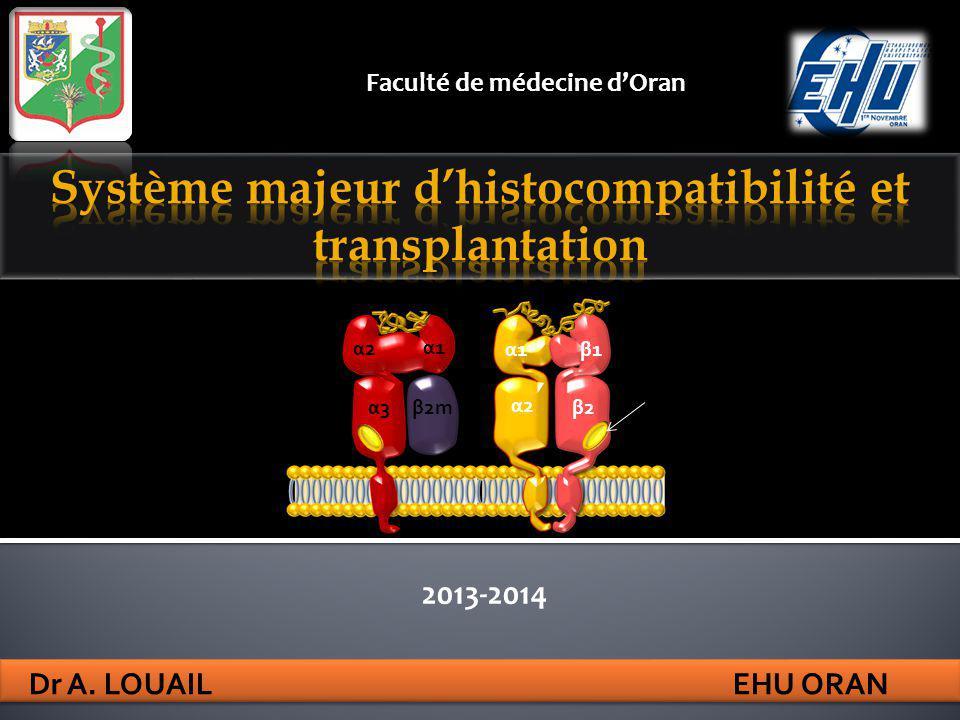 Système majeur d'histocompatibilité et transplantation