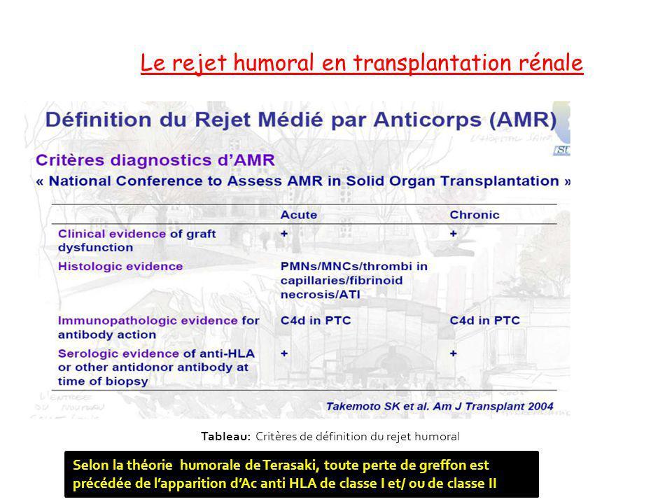 Le rejet humoral en transplantation rénale