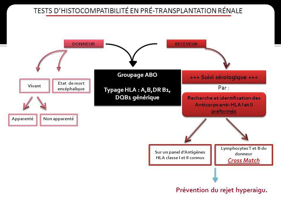 TESTS D'HISTOCOMPATIBILITÉ EN PRÉ-TRANSPLANTATION RÉNALE