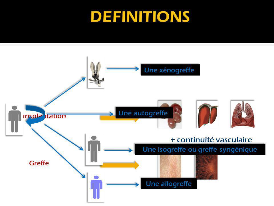 DEFINITIONS + continuité vasculaire Une xénogreffe Une autogreffe
