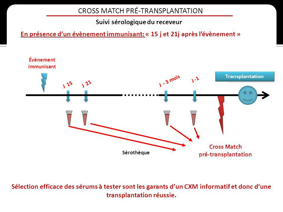 CROSS MATCH PRÉ-TRANSPLANTATION