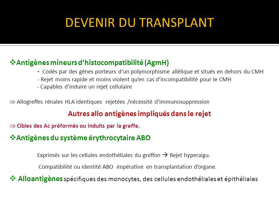 Autres allo antigènes impliqués dans le rejet