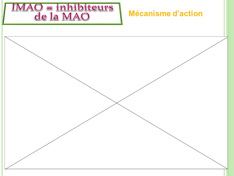 IMAO = inhibiteurs de la MAO