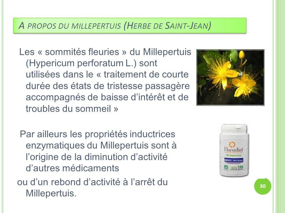 A propos du millepertuis (Herbe de Saint-Jean)