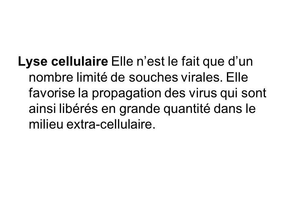 Lyse cellulaire Elle n'est le fait que d'un nombre limité de souches virales.