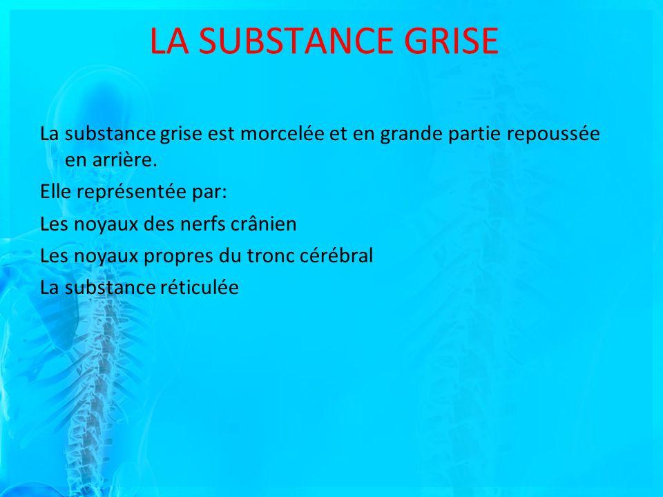 LA SUBSTANCE GRISE