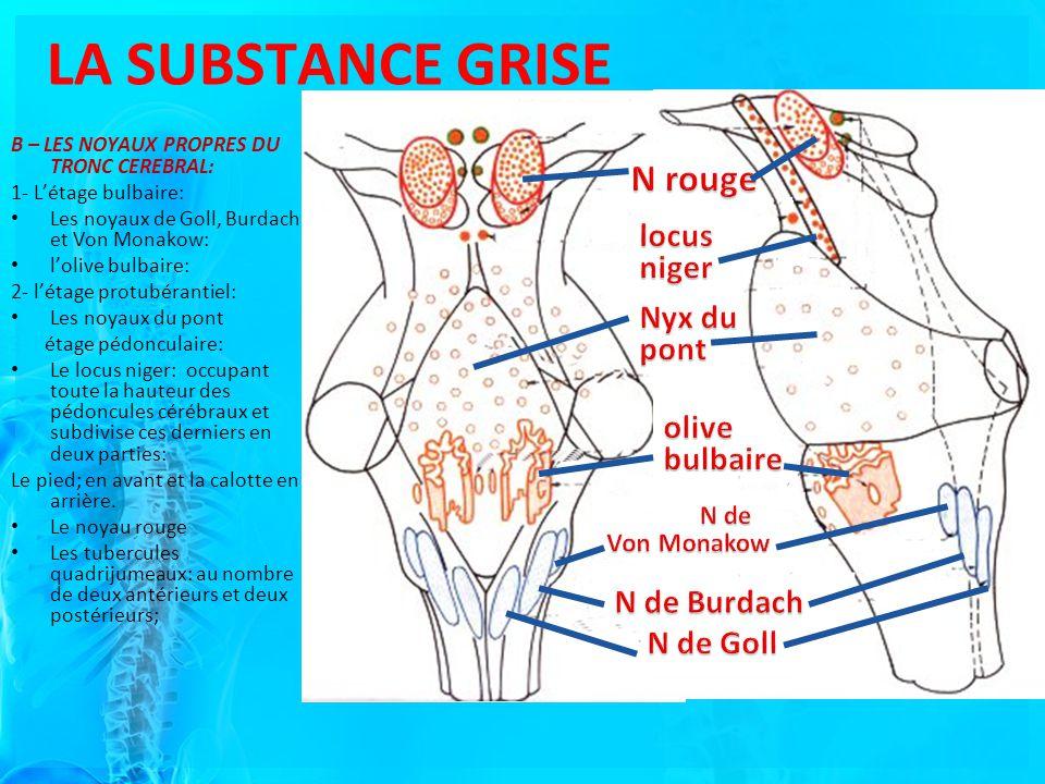 LA SUBSTANCE GRISE N rouge locus niger Nyx du pont olive bulbaire