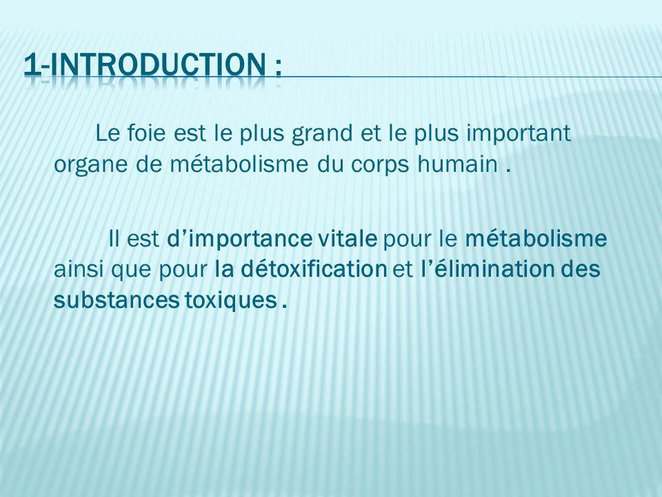 1-Introduction : Le foie est le plus grand et le plus important organe de métabolisme du corps humain .