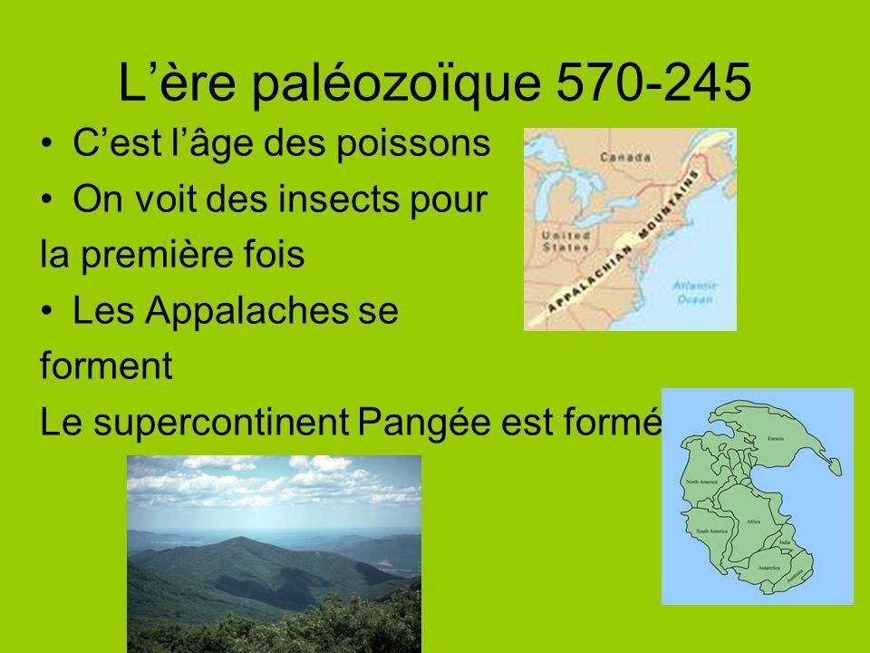 L'ère paléozoïque 570-245 C'est l'âge des poissons
