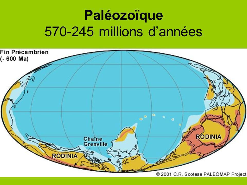 Paléozoïque 570-245 millions d'années