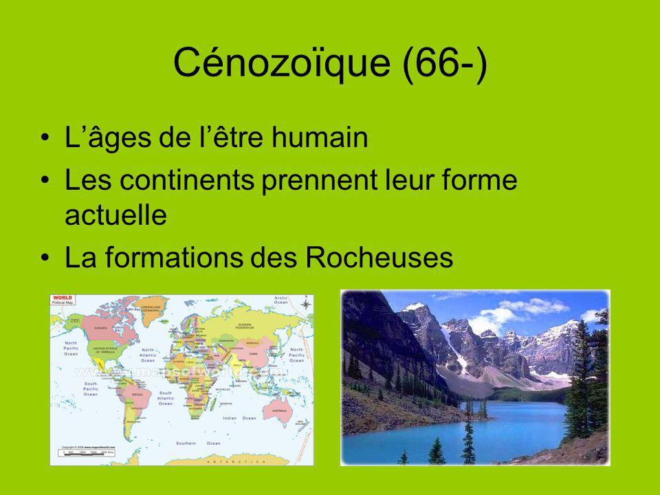 Cénozoïque (66-) L'âges de l'être humain