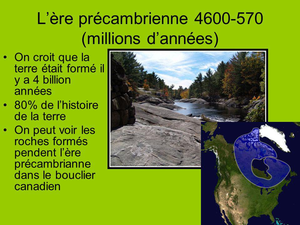 L'ère précambrienne 4600-570 (millions d'années)