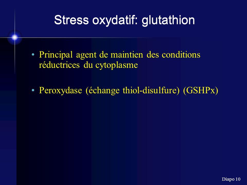 Stress oxydatif: glutathion