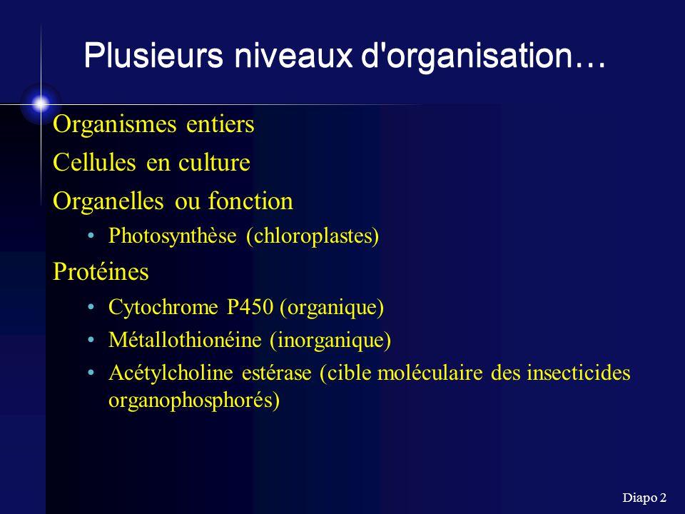 Plusieurs niveaux d organisation…