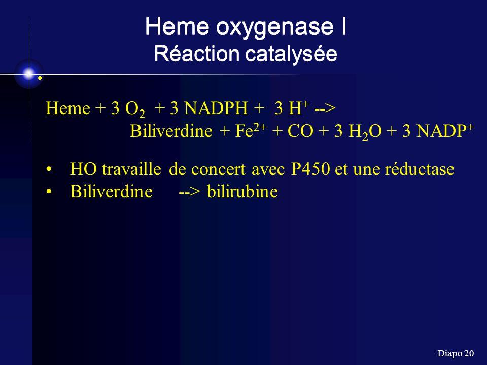 Heme oxygenase I Réaction catalysée