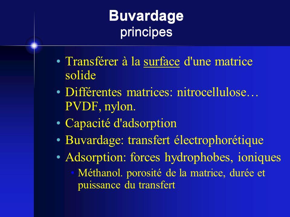 Buvardage principes Transférer à la surface d une matrice solide