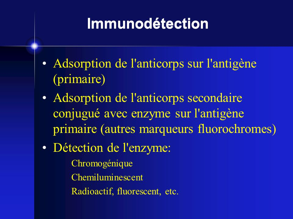 Immunodétection Adsorption de l anticorps sur l antigène (primaire)