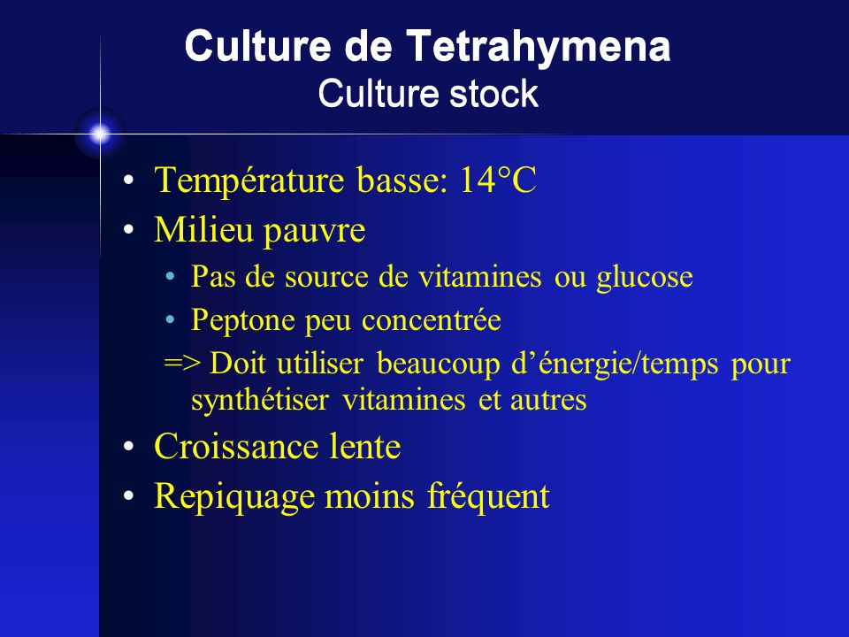 Culture de Tetrahymena Culture stock