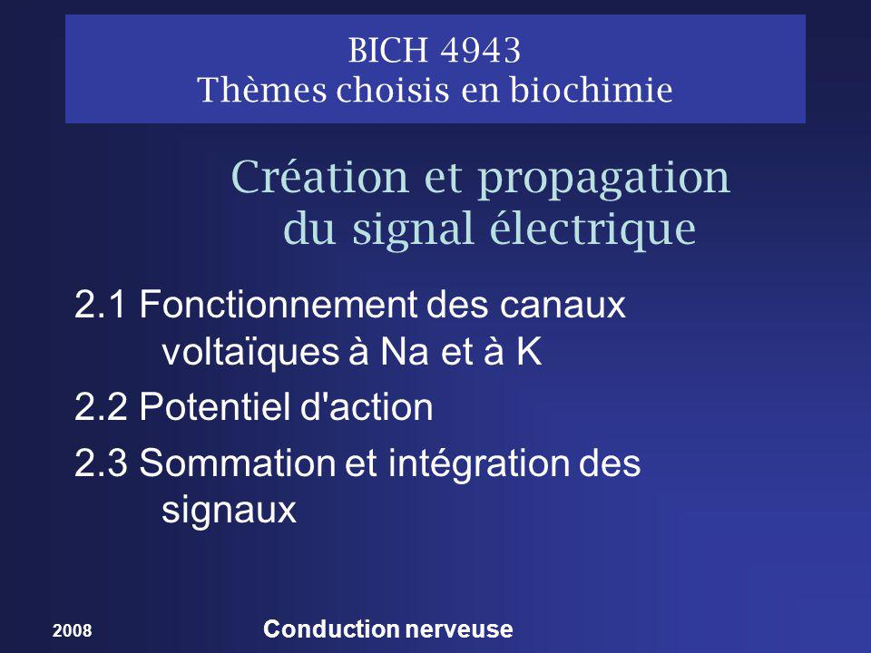 BICH 4943 Thèmes choisis en biochimie