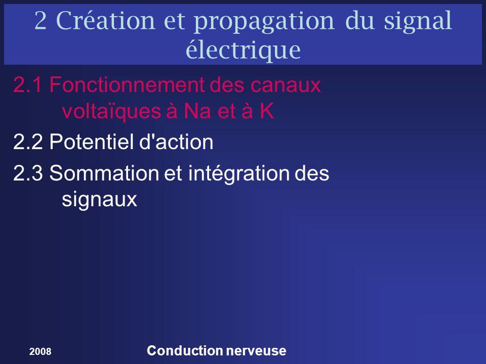 2 Création et propagation du signal électrique