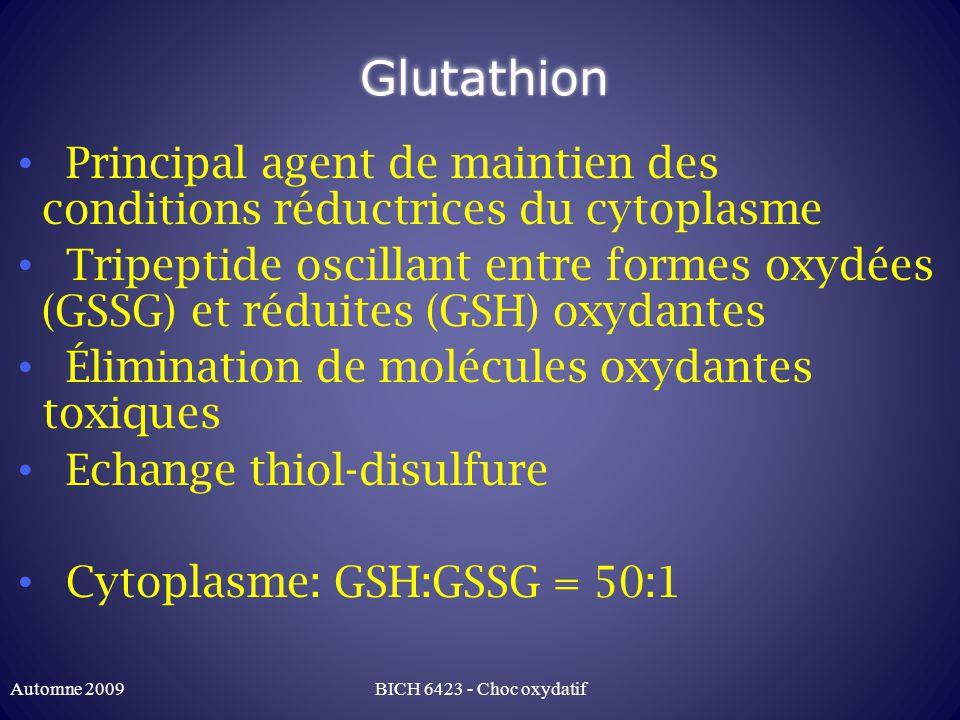 Glutathion Principal agent de maintien des conditions réductrices du cytoplasme.