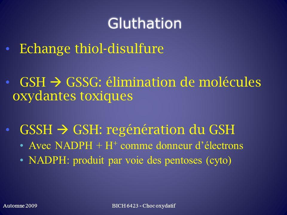 Gluthation Echange thiol-disulfure