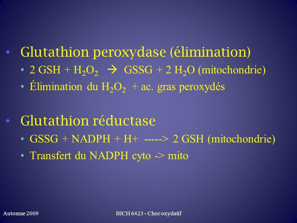 Glutathion peroxydase (élimination)