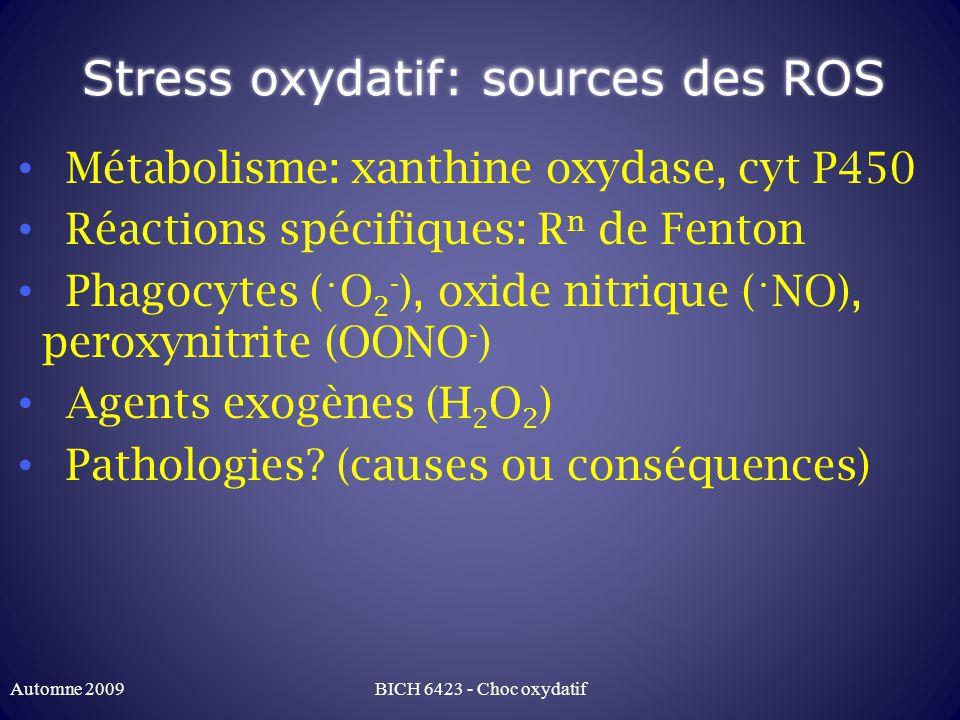 Stress oxydatif: sources des ROS