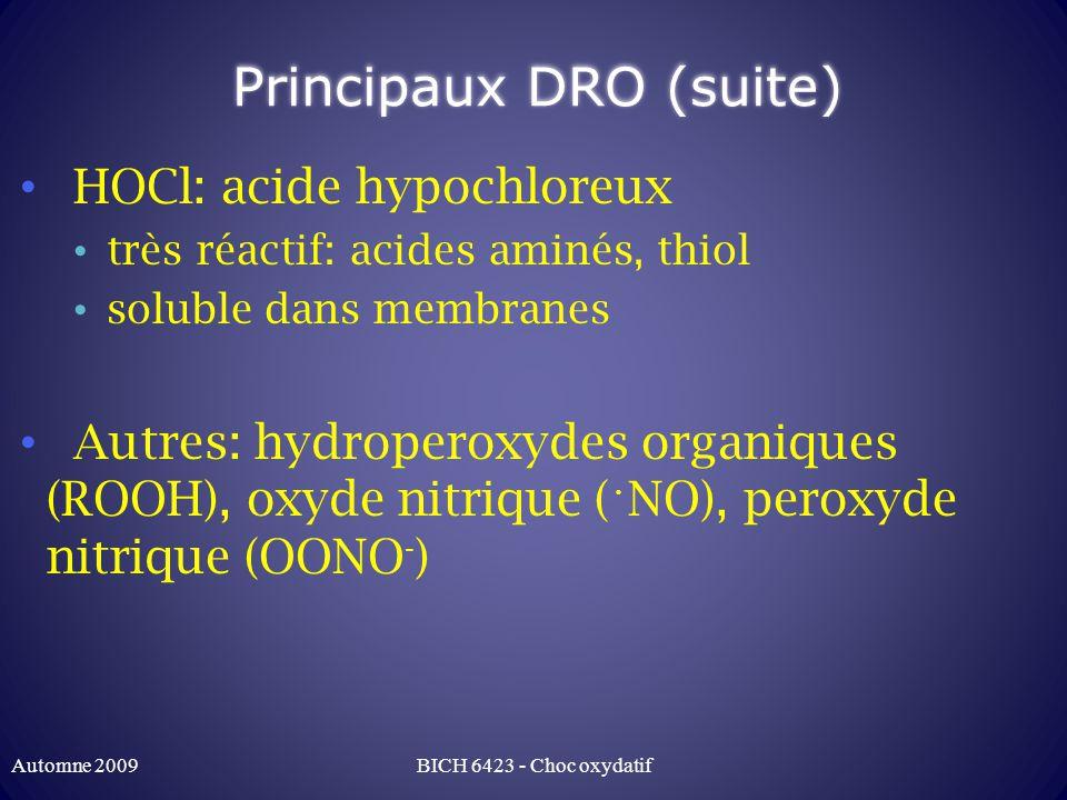 Principaux DRO (suite)