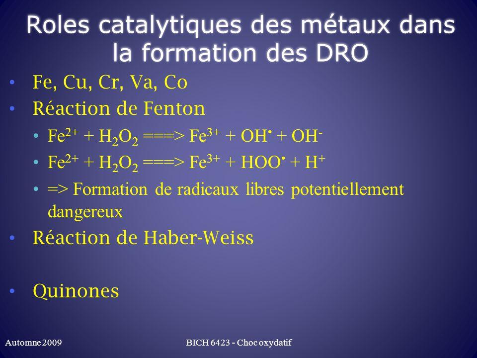 Roles catalytiques des métaux dans la formation des DRO
