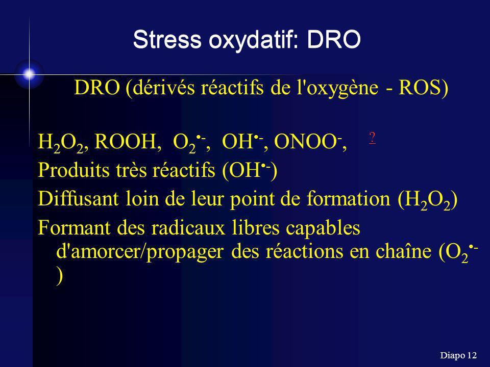 DRO (dérivés réactifs de l oxygène - ROS)