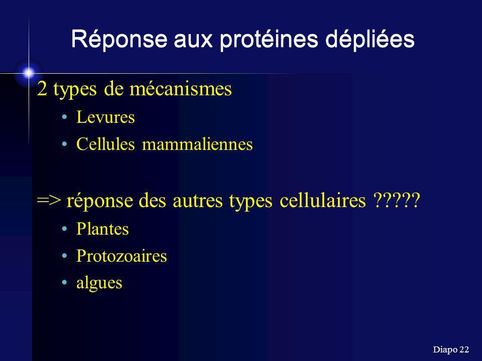 Réponse aux protéines dépliées