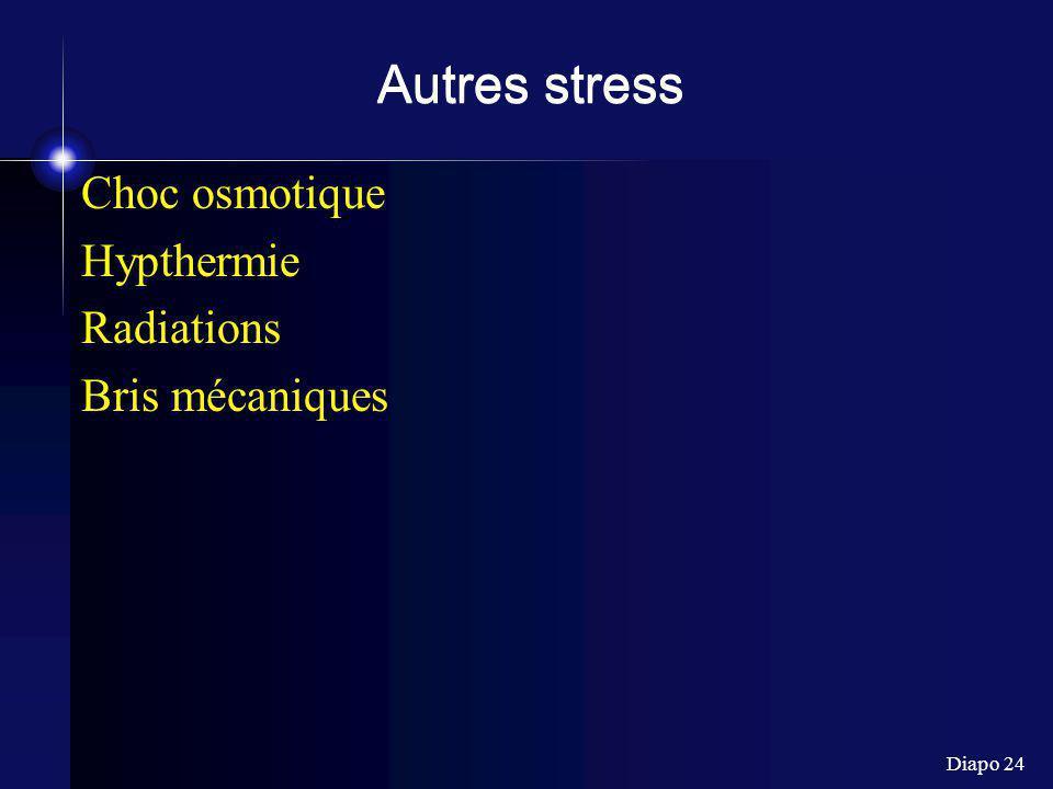 Autres stress Choc osmotique Hypthermie Radiations Bris mécaniques