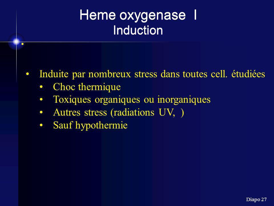 Heme oxygenase I Induction