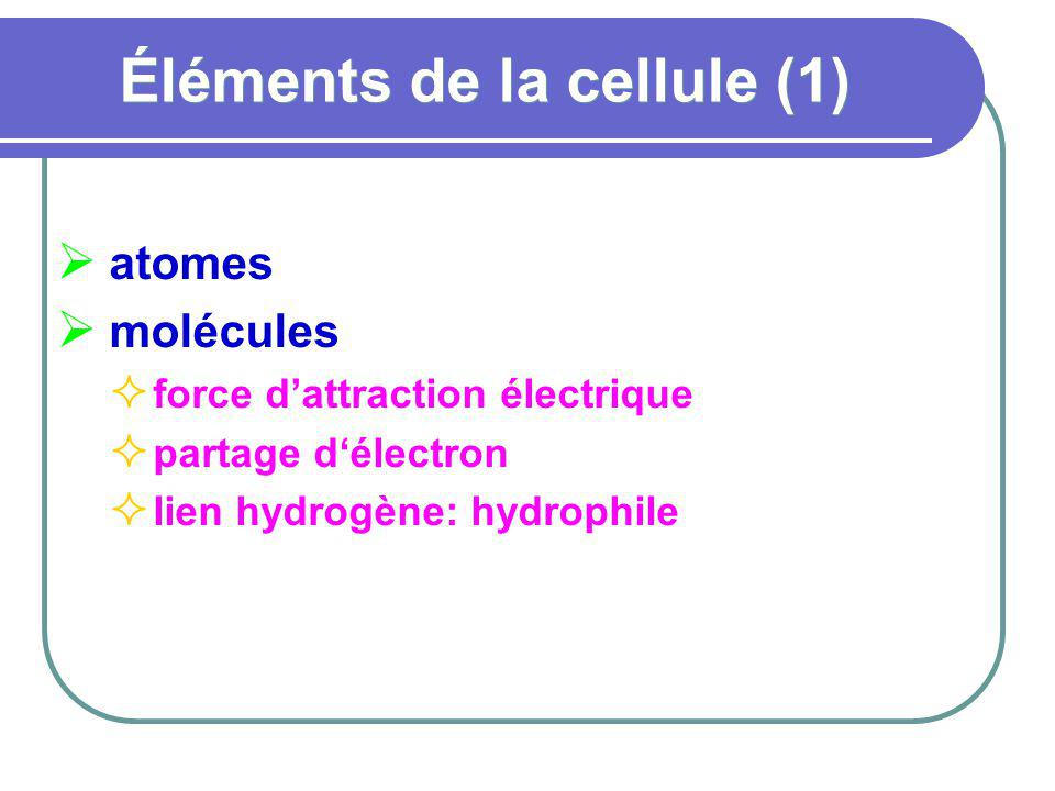 Éléments de la cellule (1)