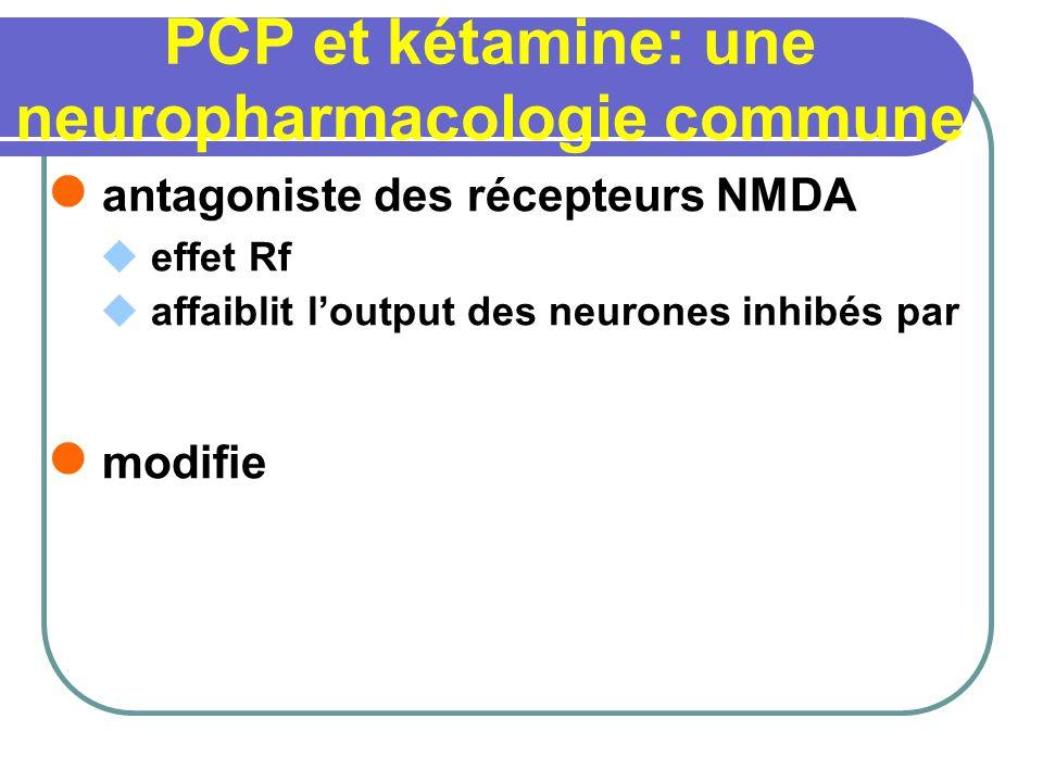 PCP et kétamine: une neuropharmacologie commune